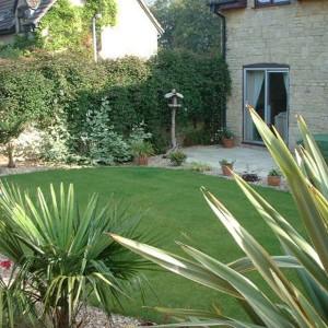landscaped-back-garden